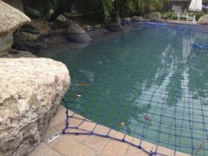 Pool Safety Net fits perfectly around rock features